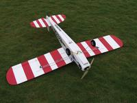 Name: cub ready to fly under.jpg