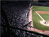 Name: Praying Mantis Hanging out at Cubs Game 8-17-10.jpg