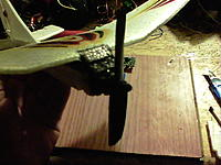 Name: 100_0670.jpg