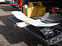 Name: Albatross.jpg