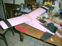 Name: new wing Beaver 2-02-07 good and plenty 001.jpg