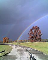 Name: 10-27-11_1640.jpg