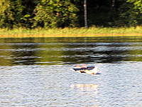 Name: IMG_0187-s.jpg