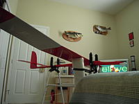 Name: Red X Bottom Wing.jpg