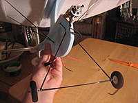 Name: IMG_6345.jpg