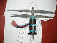 Name: PC060799.jpg