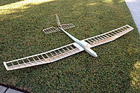 Name: golden_eagle_02.jpg