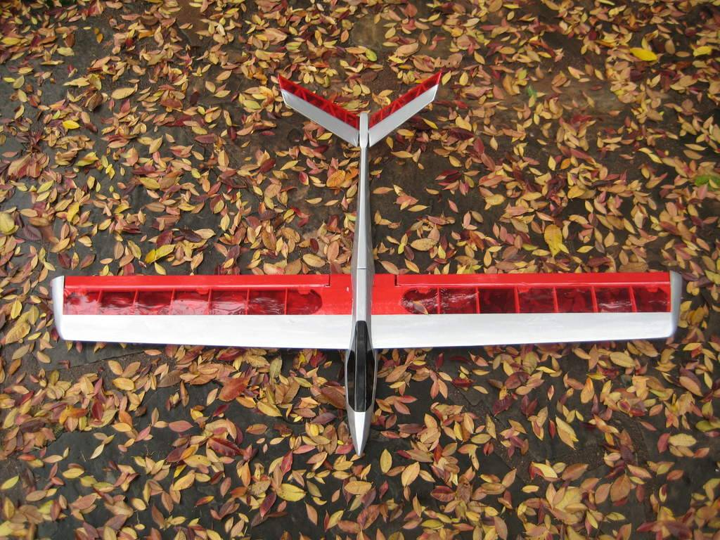 The Talon I built over Christmas vacation '08. Nice light flyer, with bass wood epoxied to the underside of the fuse.