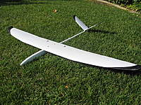 Name: Double Carbon Ocelot Top.jpg
