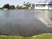 Name: hammerlakerun 005.jpg