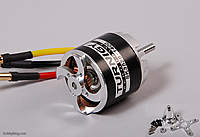 Name: SK3536-1400.jpg
