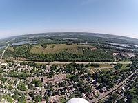 Name: RedWing02.jpg