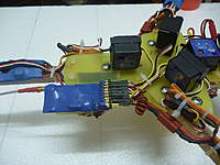 Name: P1010366(1).jpg