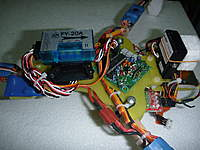Name: P1010532(1).jpg