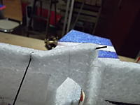 Name: SAM_1464.jpg