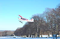 Name: DSC_2868.jpg