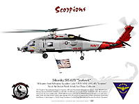 Name: aviation-graphic-seahawk-hsl-49-scorpions.jpg