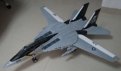 Name: F-14 completed pic.jpg