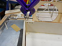 Name: DSCN3031.jpg