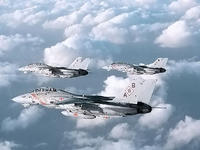 Name: F-14-6.jpg Views: 133 Size: 34.7 KB Description: