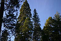 Name: IMG_4297.jpg