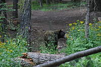 Name: IMG_6944.jpg