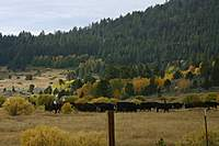 Name: IMG_7413.jpg