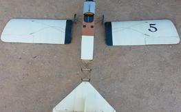 Proctor Mini Antic Electric   LPU