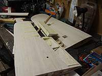 Name: DSCF5544.jpg
