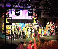 Name: CUHS Musical 2010 012.jpg