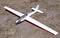 Name: ST Fox 059.jpg