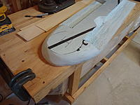 Name: P8241522.jpg