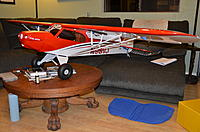 Name: DJJ_5523.jpg