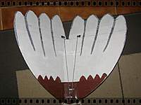 Name: DSC06220.jpg