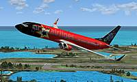 Name: 737 Repaint.jpg