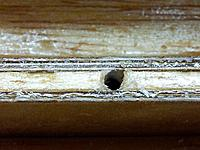 Name: 20130210_092331 (Medium).jpg