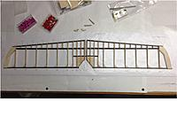 Name: Stab Photo #5.jpg