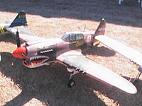 Name: FMS War Birds 029.jpg