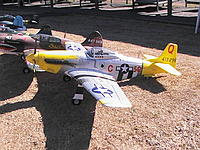 Name: FMS War Birds 027.JPG