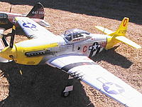 Name: FMS War Birds 028.JPG