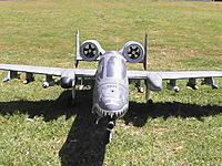 Name: Me and My LX A-10 (25).JPG