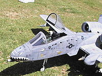 Name: Me and My LX A-10 (31).JPG