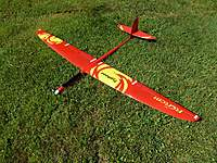 Name: Tyhoon on lawn.jpg