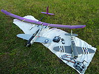Name: P1030559.jpg
