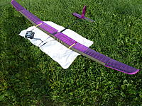 Name: P1020394.jpg