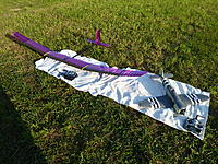 Name: P1030557.jpg