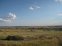 Name: IMG_2346[1].jpg