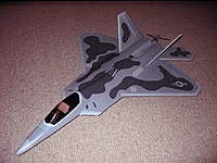 Name: F22 Foamie 1.jpg