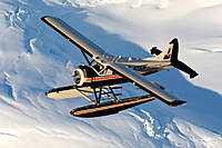 Name: DHC-2 DeHavilland Beaver-Davy20-large.jpg