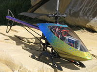 Name: Merlin_2.jpg